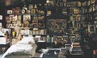 Stefan's Bedroom