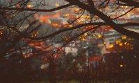 Dark Cozy Autumn