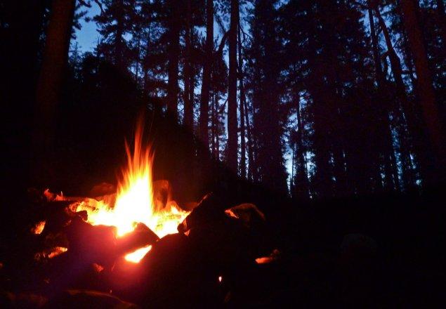 cmbm evening forest audio atmosphere