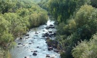 http://www.ambient-mixer.comExotic River in Jungle