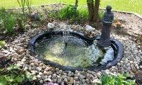 mid west summer garden