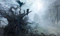 A haunted forest at night inhabited by werewolves, vampires and other creatures