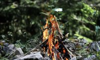 Wilderness Campfire