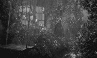 Piano and Rain