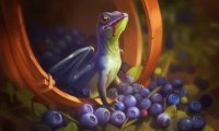 Dragons love blueberries