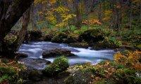 River Side in Rivendell
