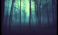 walking through a forest
