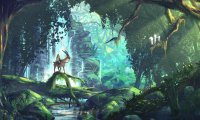 The forest of Princess Mononoke