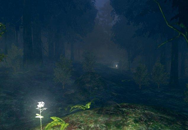 darkroot garden audio atmosphere