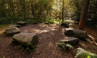 Holy place of Druids