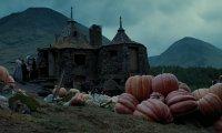 Tea at Hagrid's