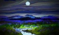Wild Creek by Midnight