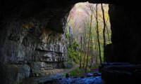 https://www.ambient-mixer.comAmbient sounds of a cave system near the entrance