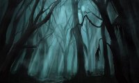 http://www.ambient-mixer.comD&D The Haunted Wood adventure