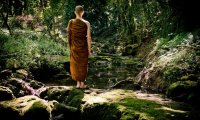 https://www.ambient-mixer.comNature around Santacittarama, Buddhist Monastery