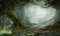 Eerie Mirkwood Forest