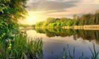 En mi audio se escuchan sonidos de agua y un ambiente de naturaleza.