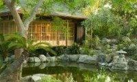 Evening in a rainy Japanese garden