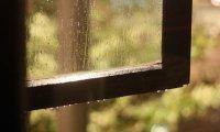 Window Open Rainy Day