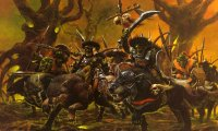 Battle against orcs, goblins and wolves