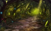 A Quiet Fairy Forest at Night
