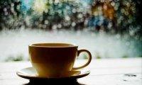 Quiet Rainy Cafe
