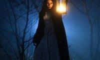 Enchanted Wood- Night