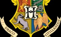 http://www.ambient-mixer.comQuidditch Gryffindor vs. Hufflepuff