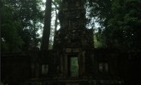 The Forest Temple