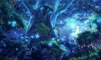 Enchanted Faerie Forest at Night