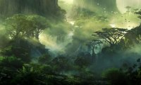 Ambient Music for Jungle Encounters