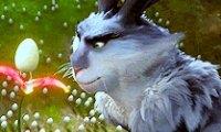 Bunnymund's Warren