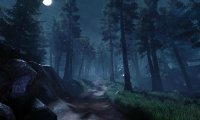 Your party must venture through the dark Strix Woodlands.