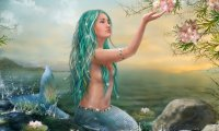 Beautiful dangerous ocean dwellers
