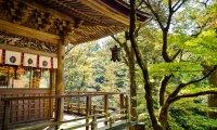 Japanese Zen Garden Sounds for Meditation