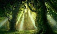 A Fantasy Trail