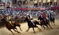 http://www.ambient-mixer.comPalio Horserace in Siena
