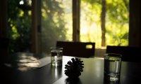 Camp Nano Cafe