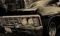Inside the impala