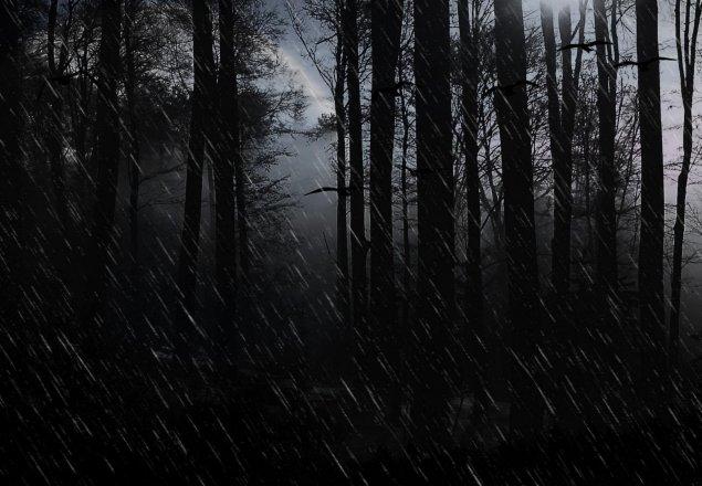 A Cold Dark Rainy Night Audio Atmosphere