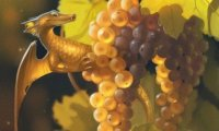 There are dragons in the vines