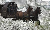 https://www.ambient-mixer.comTravel in the Snow via Horse, Carriage and Foot