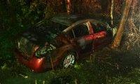 Car crash in the bayou