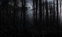 http://www.ambient-mixer.comWhen the Rain Stops (fanfic)