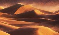 Desert, Hot Wind