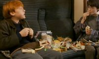on the hogwarts express with hermione, ron and hedwig