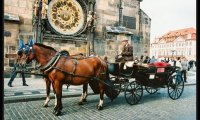 Medieval Town Carriage Ride