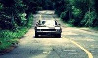 Black Impala Groovin'
