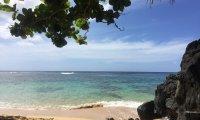 Hawaiian Afternoon