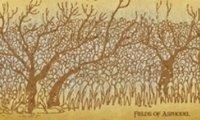 Fields of Asphodel